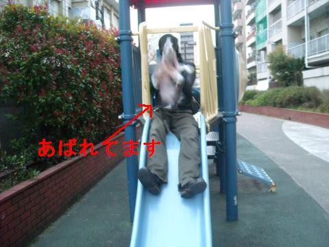DSCN2546_convert_2011040821421.jpg