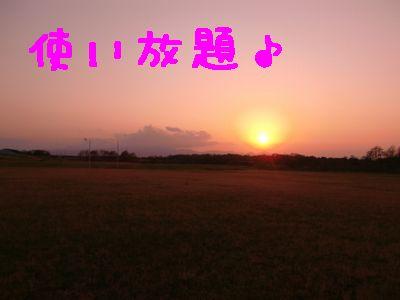 CIMG4110.jpg