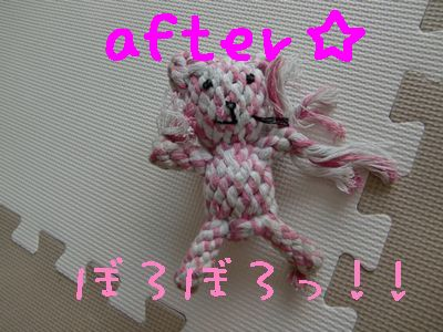 CIMG4169.jpg
