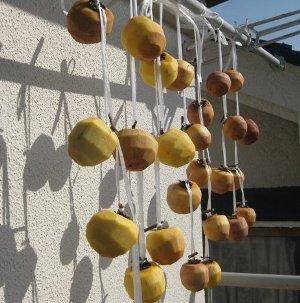 柿を干した