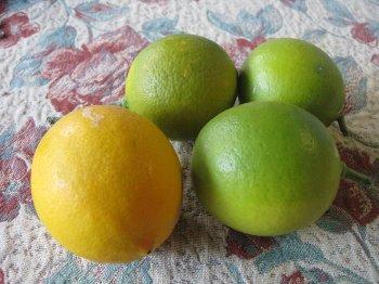 家のレモン