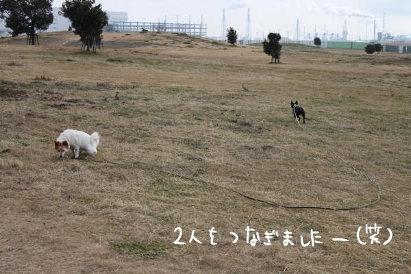 ponzu118 019_edited-1