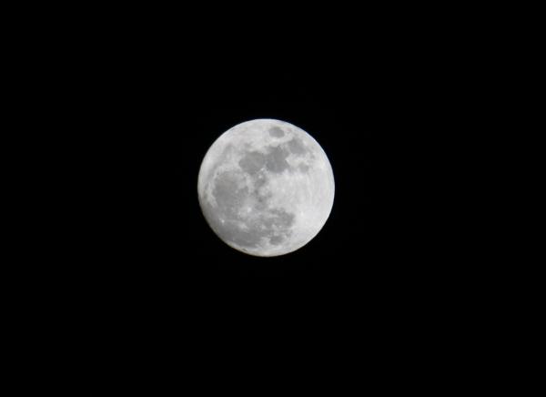 満月 017-1