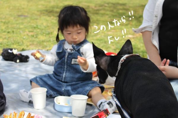 hanami 091_edited-1