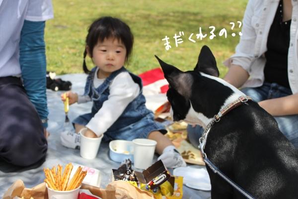 hanami 097_edited-1