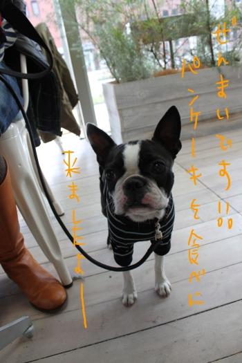 ponzu 関東1 112_edited-1