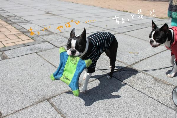 ponzu 関東1 102_edited-1