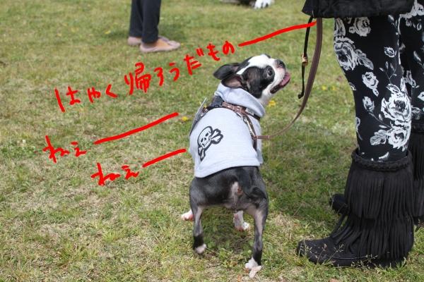 ponzu 関東1 236_edited-1