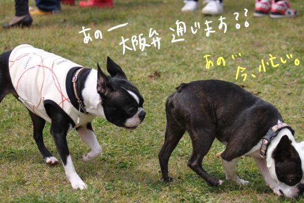 ponzu 関東1 284_edited-1