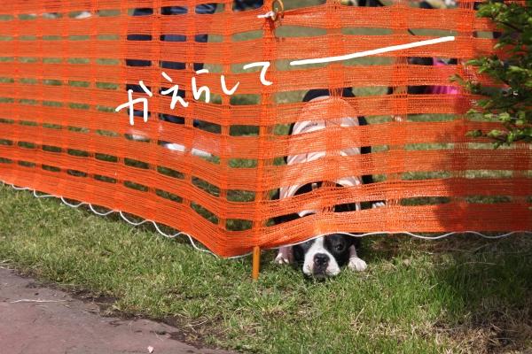 ponzu 関東1 407_edited-1