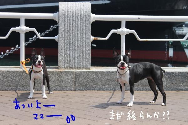 ponzu 関東1 572_edited-1