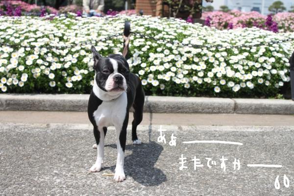 ponzu 関東1 592_edited-1