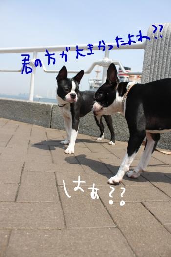 ponzu 関東1 582_edited-1