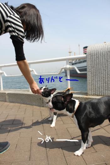 ponzu 関東1 581_edited-1