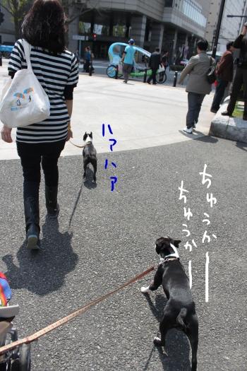 ponzu 関東1 606_edited-1