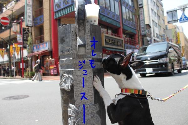 ponzu 関東1 619_edited-1