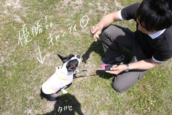 ぽん酢、オフ会、春1 025_edited-1