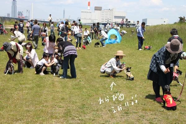 ぽん酢、オフ会、春1 023_edited-1