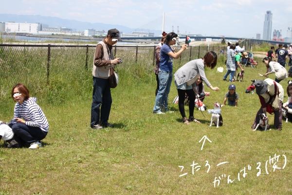 ぽん酢、オフ会、春1 022_edited-1