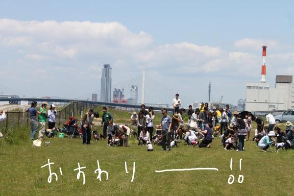 ぽん酢、オフ会、春1 011_edited-1
