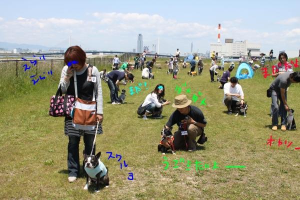 ぽん酢、オフ会、春1 032_edited-1