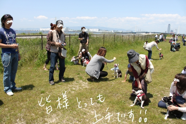ぽん酢、オフ会、春1 026_edited-1
