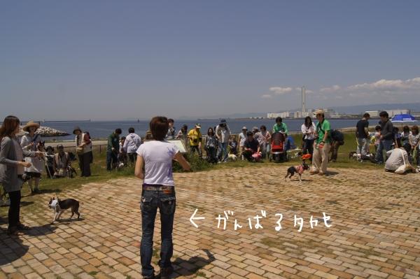 ぽん酢、オフ会、春2 057_edited-1