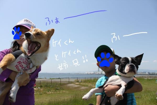 ぽん酢、オフ会、春1 250_edited-1