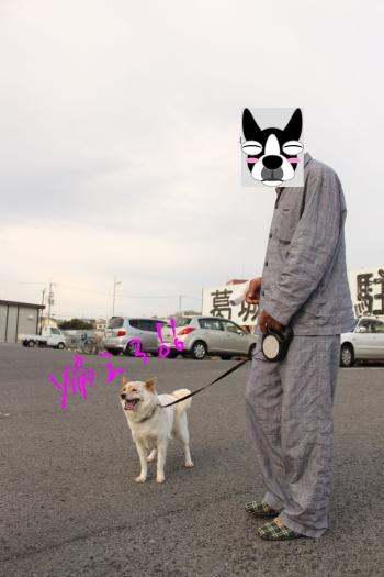 ponzu188 012_edited-1