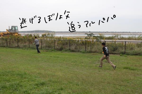 関西ボステリ倶楽部 2010秋 175_edited-1