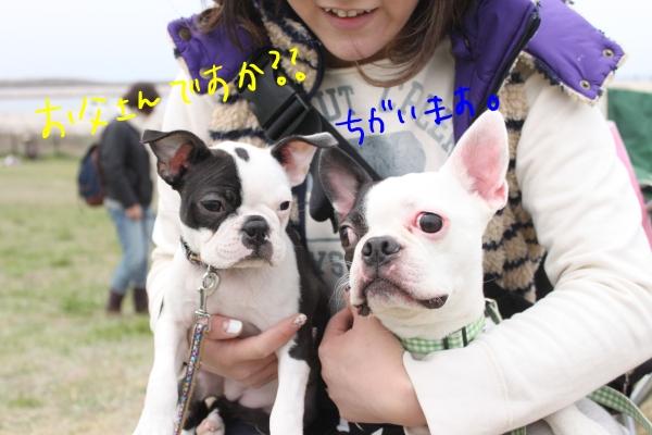 関ボス2011春・1 091_edited-1