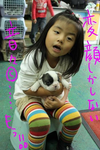 ponzu65+054_edited-1_convert_20091025200336.jpg