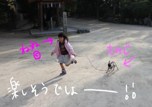 ponzu79+213_edited-1_convert_20091116195816.jpg