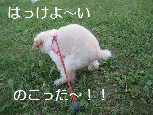 2009_1007_145913-IMG_7023.jpg