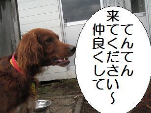 2009_1015_134617-IMG_7213.jpg