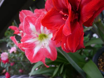 2011_05_31_05.jpg