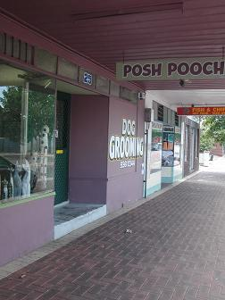 poshpooch in Perth