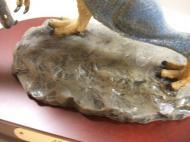 アロサウルス1