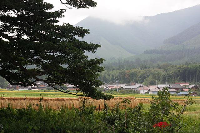 大山町~仁王堂公園周辺ポタ