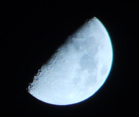 月トリミング(もやっと)