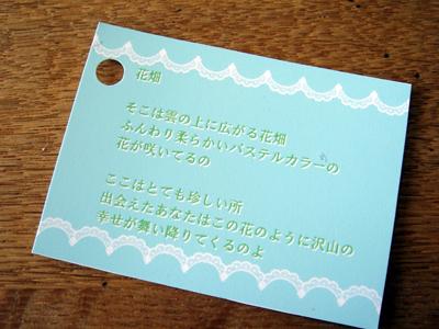 DSC04509.jpg