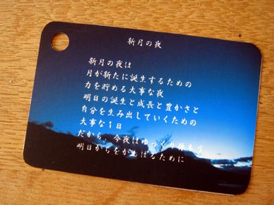 DSC04510.jpg