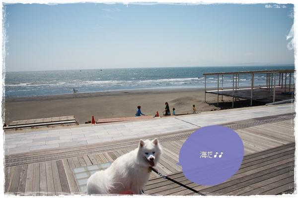 21_20110522001504.jpg