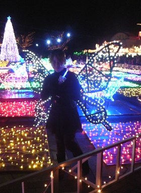 フローランテ宮崎 交流広場の蝶々