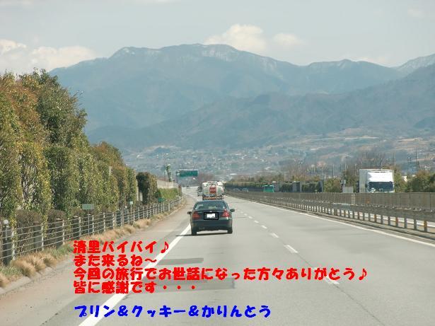 CIMG5237.jpg