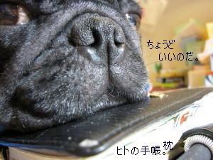 IMG_20110915__03.jpg