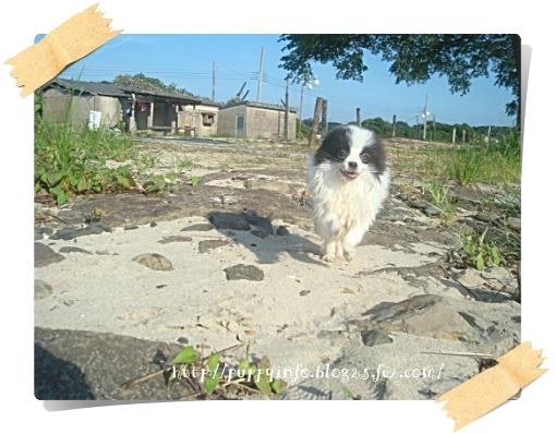 2010-09-19-005.jpg