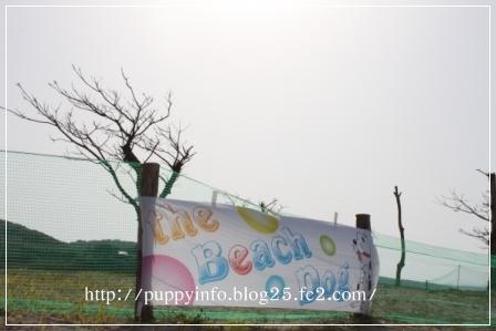 2010-05-03里帰り会-254