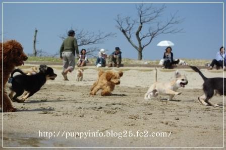 2010-05-03里帰り会(Kzy)-126