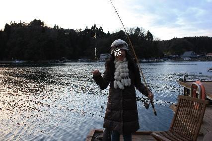 マキ釣りアジ